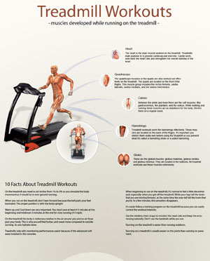 What Muscles Are Developed When Running On The Treadmill