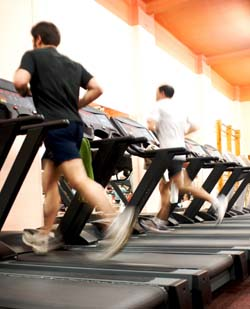 how to train a dog to run on a treadmill